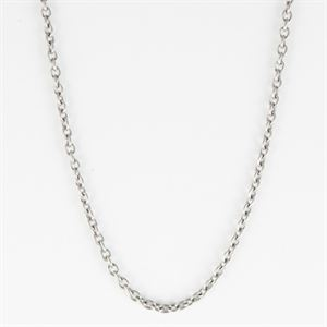Picture of Silver Slider Chain - 16""